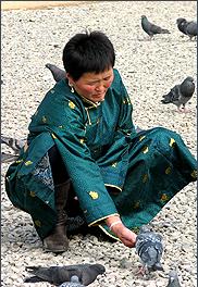 Mongolian with pigeons, UB, Mongolia 2010